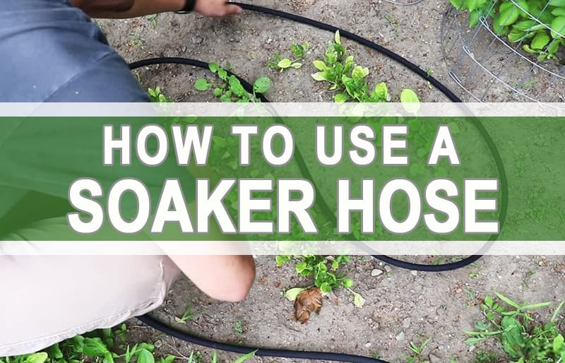 How To Use A Soaker Hose
