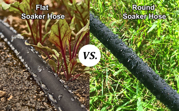 Flat Soaker Hose vs. Round Soaker Hose: What's the Difference?