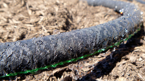 What Is A Soaker Hose?