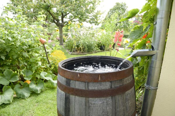 how to ensure your rain barrel has enough water pressure for a soaker hose