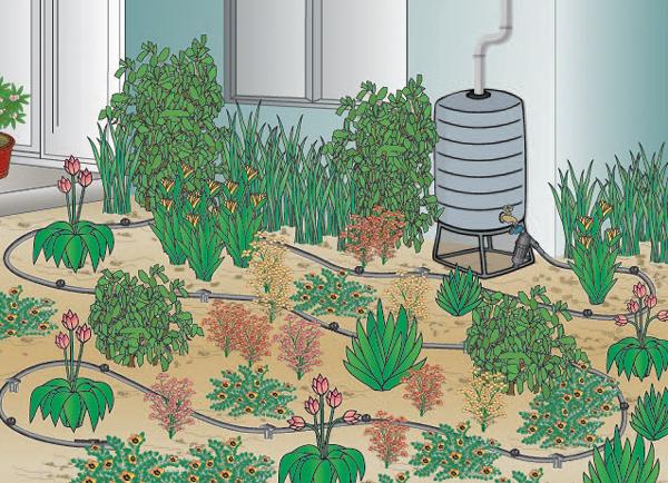 The Benefits of Rain Barrel Soaker Hose